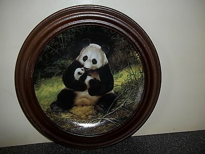 COLLECTOR PLATE THE PANDA WITH HTF WOOD ROUND FRAME BRADEX WILL NELSON