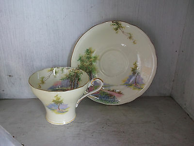 AYNSLEY Bone China England Lake Forest Garden Cup & Saucer
