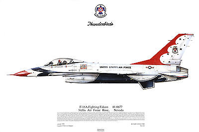 Squadron Print 315 F16A Fighting Falcons Thunderbirds USAF Nellis Aviation Art