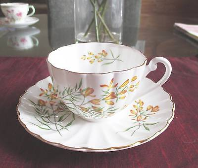 SHELLEY Fine Bone China   **GOLDEN BROOM** ,#14010     LUDLOW Shape