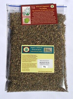 DRIED HERB MULLEIN Verbascum thapsis Herbal Tea 50gm Wildcrafted