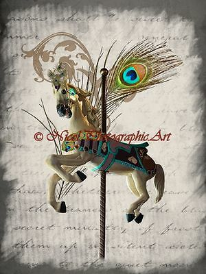 Peacock Feather Carousel White Horse Bedroom Art Home Decor Matted Picture A744