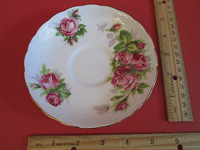 Moss Rose Tuscan Collectible Fine Bone China  Plate Made in England