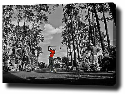 """TIGER WOODS CANVAS PRINT POSTER PHOTO WALL ART 30""""x20"""" UN SIGNED MASTERS NEW"""