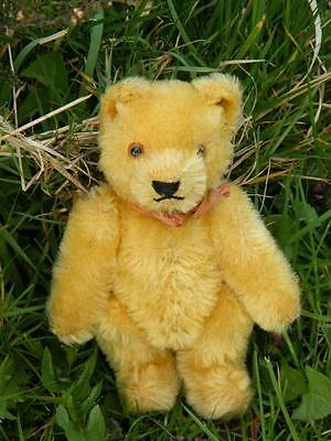 ANTIQUE SMALL GOLD STEIFF BEAR BUTTON IN EAR 1950'S VERY PRETTY VINTAGE OLD TED