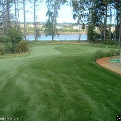 Fescue grass seed blend ,Combat Extreme, excellent choice for- USDA Zones 6 - 7