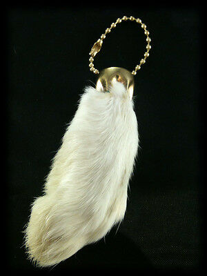 Natural Color Real Rabbit's Foot Keychain- New -  Lucky (Random)