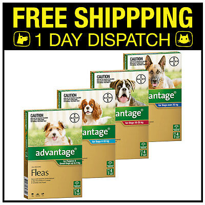 Advantage Flea Spot On For Dogs (Flea Allergy Dermatitis) - 4 Pack - All Sizes