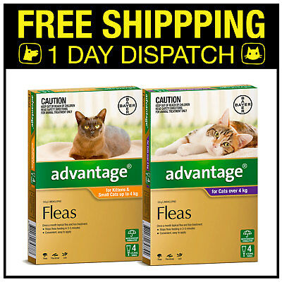 Advantage Flea Spot On Treatment For Kittens & Cats 4 Pack - All Sizes