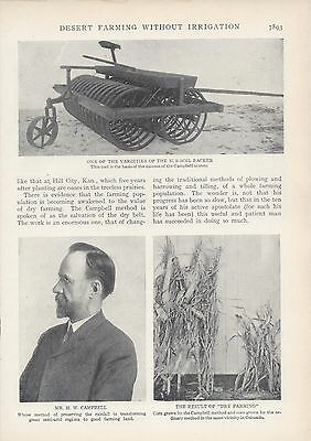 1906 Campbell System Desert Farming Without Irrigation vintage magazine article