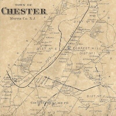 Chester Milltown Hacklebarney State Park NJ 1868 Map with Homeowners Names Shown