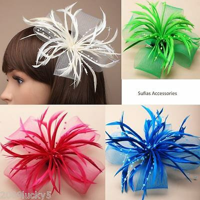 Wedding Ascot Races Looped Mesh Feather & Pearl Bead Flower Hair Clip Fascinator