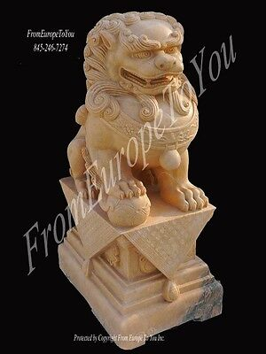 Nice Hand Carved Sunshine Marblesitting  Foo Dogs Fd25