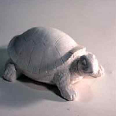 Turtle latex Mould/Mold plaster/candle/soap 1047