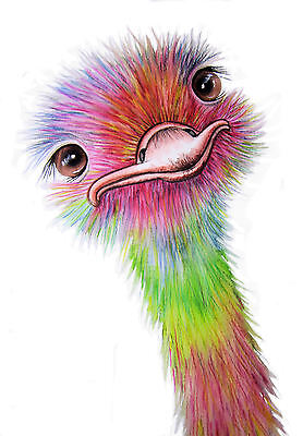 *OSTRICH 3* Signed Print Available in 4 Sizes From A4 to A1 by Maria Moss