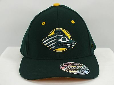 Alaska Anchorage SEAWOLVES NCAA FLEX/FITTED NEW CAP BY ZEPHYR (D45)