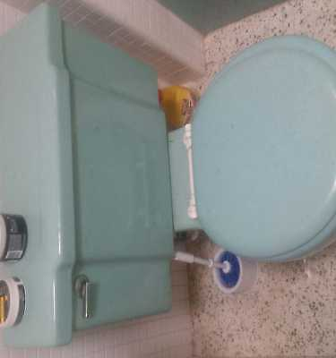 1960's Vintage Ming Green Toilet and Sink Kohler. Excellent Condition