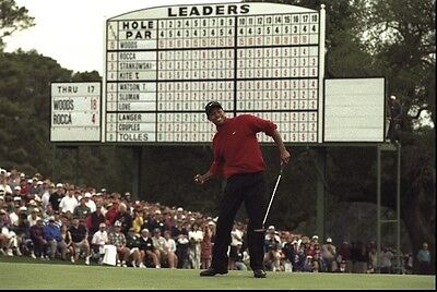 TIGER WOODS Photo Quality Poster - Choose a Size!  #22