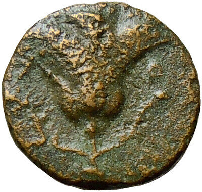 Carian Island 167BC Rhodes 167BC Helios Rose Ancient Bronze Greek Coin Æ11 Rare