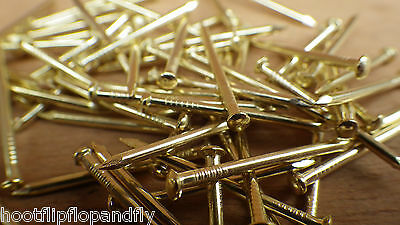 "PACK 1"" 25mm HARDENED PICTURE PINS ELECTRO BRASSED SPARE NAILS FOR PICTURE HOOKS"