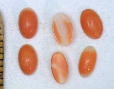 Antique Vintage Genuine OLD Cabochon Loose CORAL Oval Stones  8 pcs/set  #O19