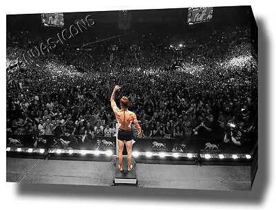 Conor Mcgregor Canvas Print Poster Photo Wall Art Ko Ufc Weigh In Crowd