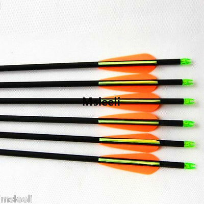 6PCs 31'' Hunting Archery Fiberglass Arrows for bow Target Practice Screw Point