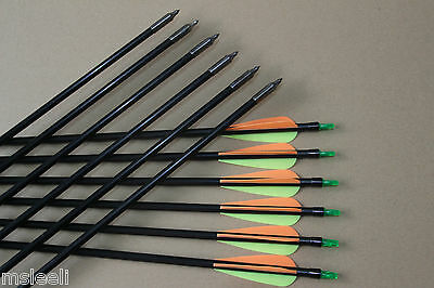 12pcs 33'' Archery Sealed Tips Fiberglass Arrows for Compound Bow Shooting