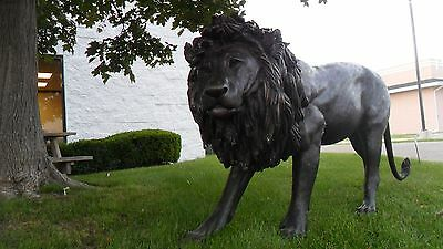 7 foot long Life size Bronze Monumental Walking Lion in Stride  CECIL TRIBUTE