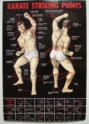 Karate Poster Striking Points Wirkungspunkte