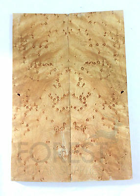 Guitar top bookmatched birdseye maple 4A grade, unique stock 54