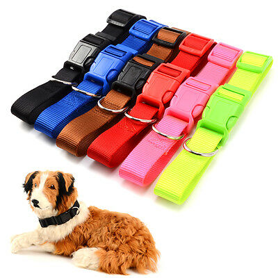 Adjustable Soft Fabric Nylon Dog Puppy Collar with Buckle and Clip for Lead