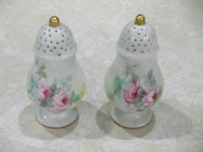Antique FAVORITE Baveria porcelain hand painted SIGNED salt and pepper shakers