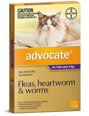 Advocate Flea & Worm Control for Cats over 4kg - Single Dose