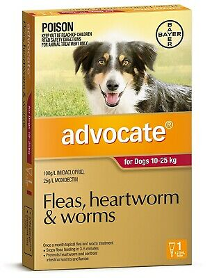 Advocate Flea & Worm Control for Dogs 10-25kg - Single Dose