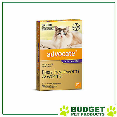 Advocate For Cats Large Over 4Kg Single Dose
