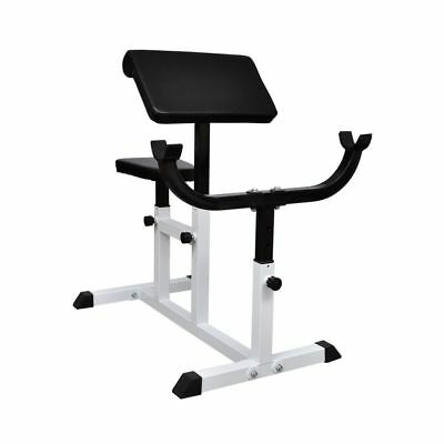 Fitness Curl Bicep Tricep Exercise Weight Gym Bench Bar