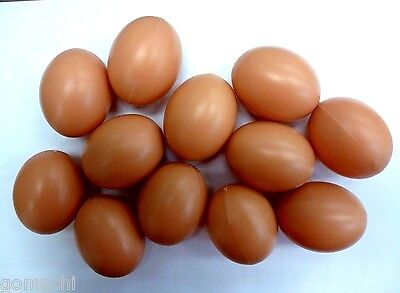 12 Pcs Toys  Eggs Fake Chicken Fat Baby Realistic Novelty Decorative Brown Kitc