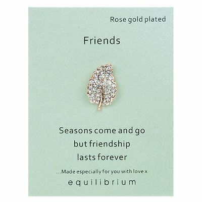 Lapel pin brooch Friendships last forever Rose Gold Plated equilibrium