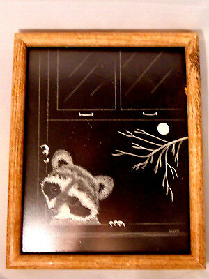 Raccoon Picture 8 x 10 Framed