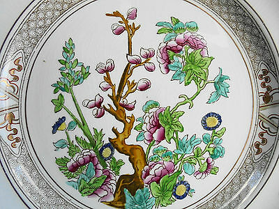 ANTIQUE BOOTHS CHINESE TREE ROYAL SEMI PORCELAIN WALL PLATE c1880 - 2