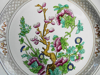 ANTIQUE BOOTHS CHINESE TREE ROYAL SEMI PORCELAIN WALL PLATE c1880 - 3