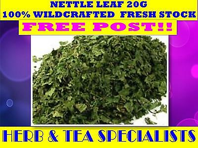 NETTLE LEAF 20G TEA☆100% Urtica dioica- WILDCRAFTED☆RELAXATION☆TEA☆HERBAL☆SAVE