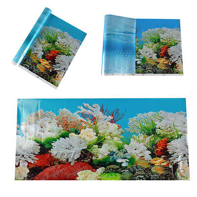 Double Sided Aquarium Seascape Landscape Poster Fish Tank Background Reptile New