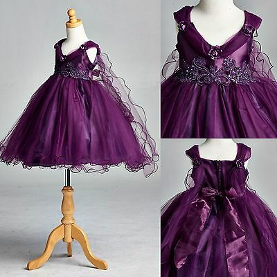 NEW Plum Application Dress Flower Girl Bridesmaid Holiday Pageant Recital #33