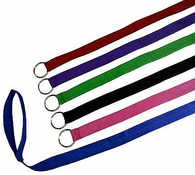 BULK PACK SLIP LEADS dog pet grooming kennel animal control shelter lead leash