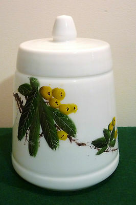 VINTAGE WHITE MILK GLASS CANISTER / CONTAINER with LID HAND PAINTED FLOWERS