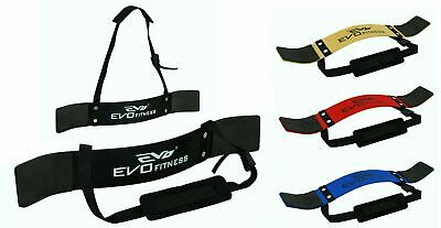 EVO Weightlifting Arm Blaster Biceps Isolator Gym Support Strap Pro Bodybuilder