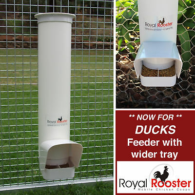 ROYAL ROOSTER Single Duck Feeder - for wider beaks
