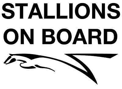 STALLIONS ON BOARD Horsebox Trailer Vinyl Lettering Stickers Decals Graphics (S)